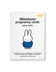 Milestone Pregnancy Cards Nijntje editie