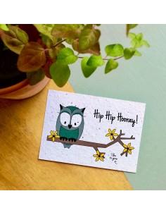 Wenskaart Flowers Owl Hip Hip Hooray - Bloom